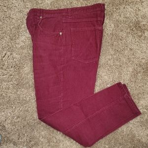 Corduroy burgundy pants